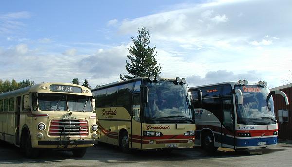 Triss i bussar